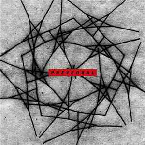 Matthew Stevens  - Preverbal download album