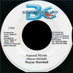 Wayne Marshall - Natural Mystic download album